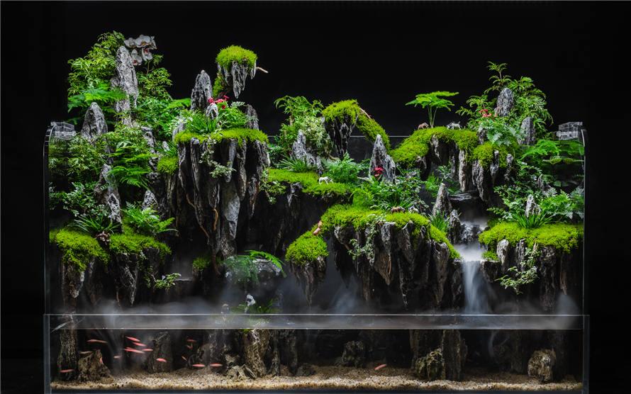 水陆缸生态景观