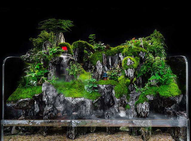 小型水陆生态景观